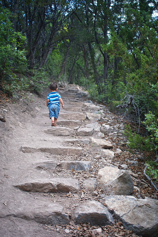 boy walks up stone path into the forest