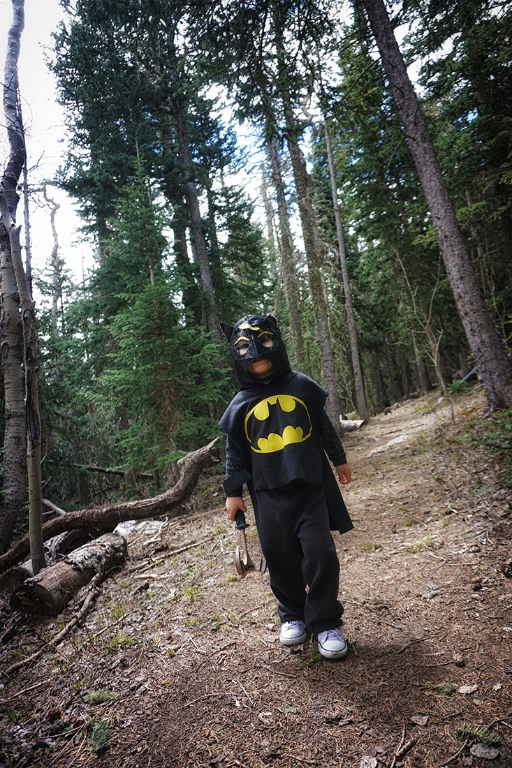 batman in the wilderness - solitude