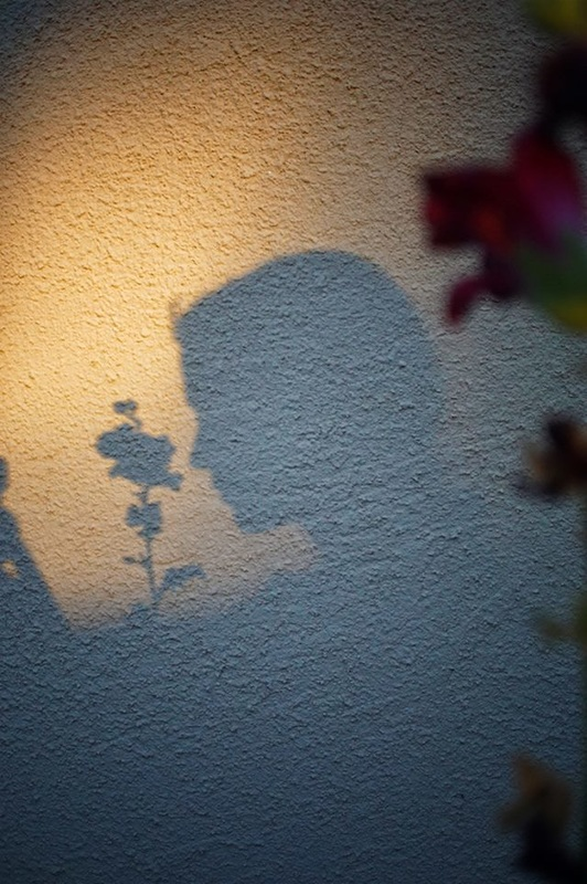 silhouette of woman with flower