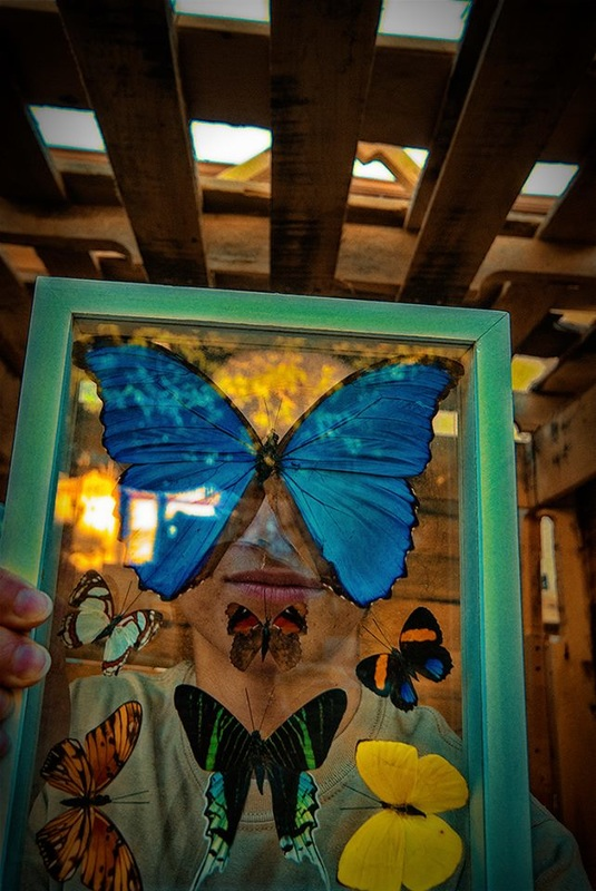 Selfie inside pallet clubhouse with framed butterflies