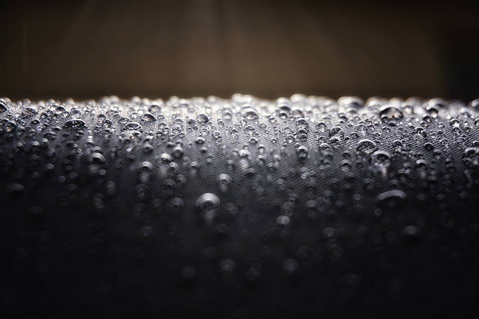raindrops on dog bed