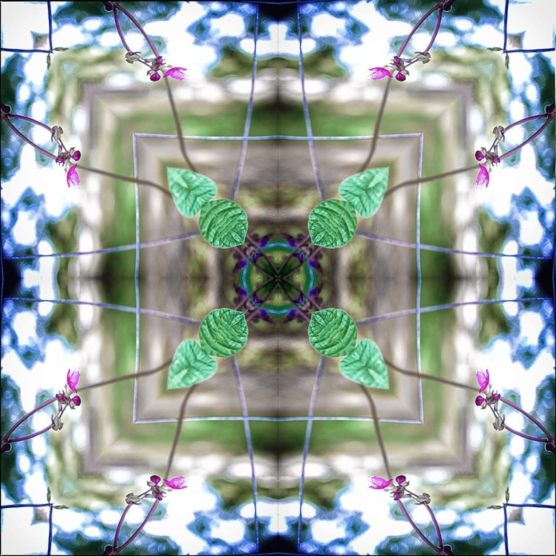 kaleidoscope digital image of bean plants on fence
