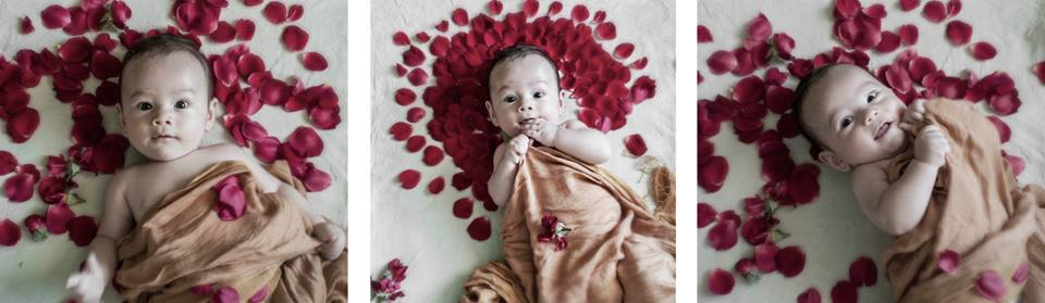 portrait of baby with rose petals