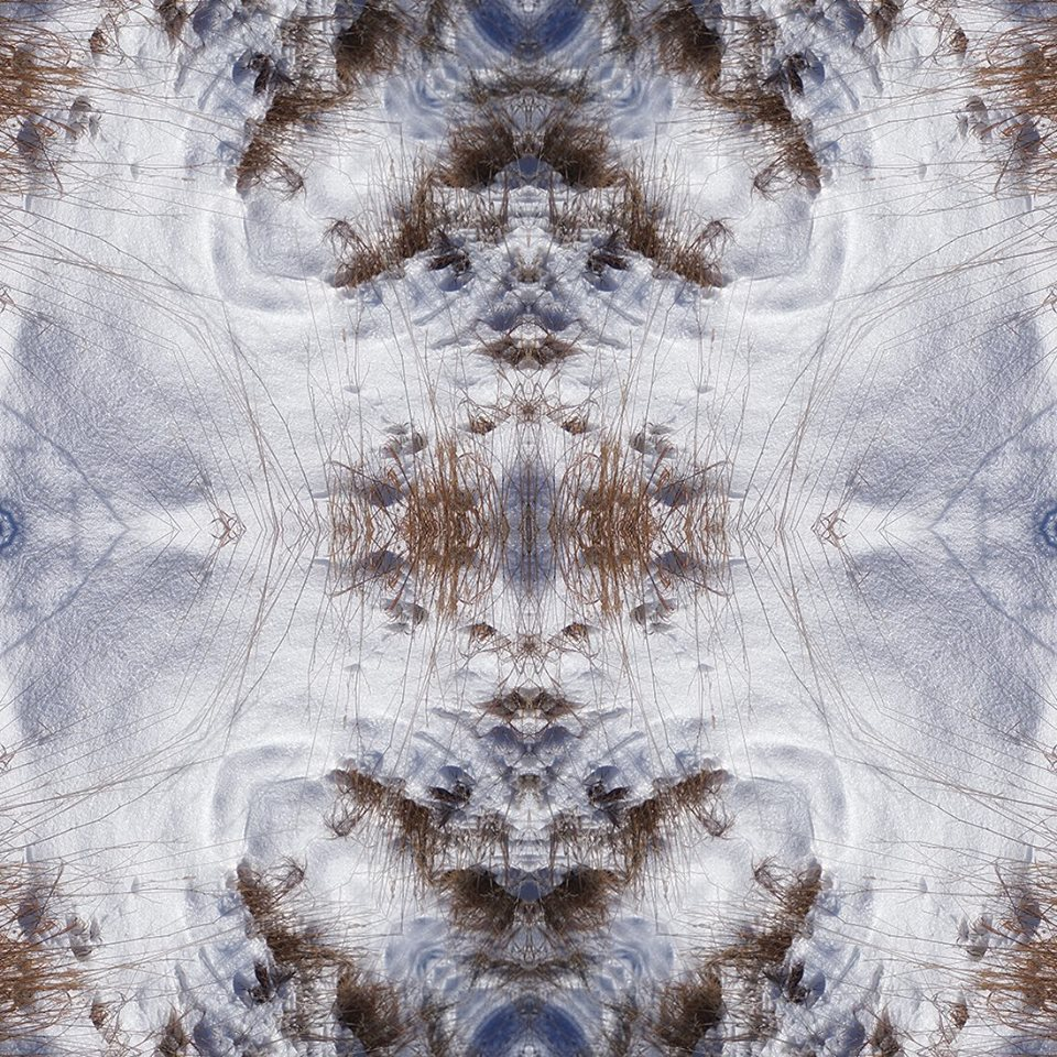 Snow and grass kaleidoscope