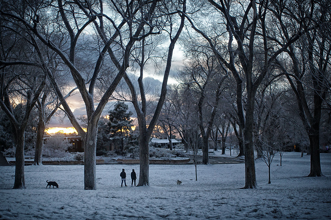 people and dog play in snow in park at sunset
