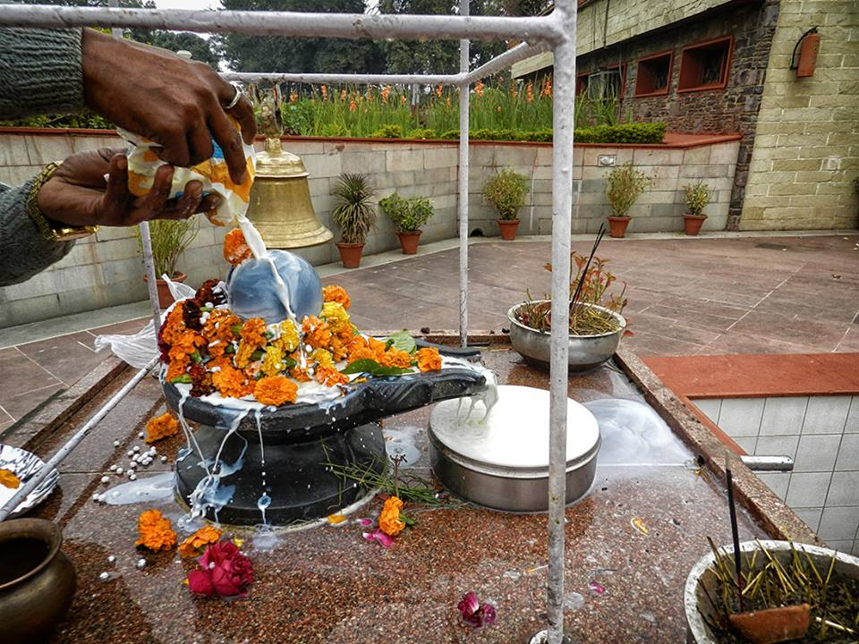 pouring milk over Shiva Lingam with flowers