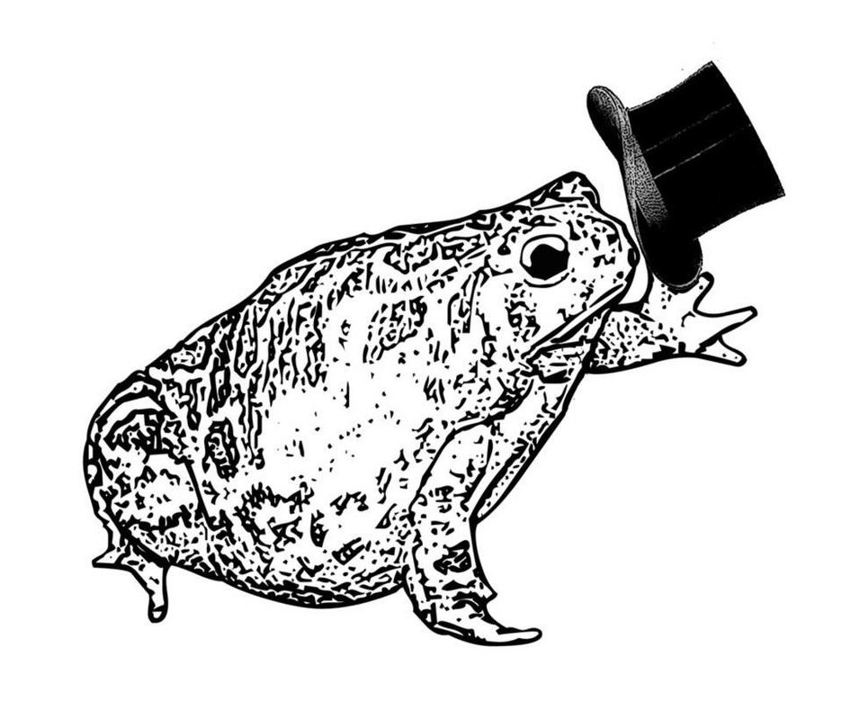 frog tipping a top hat