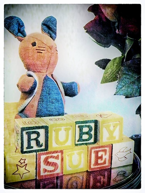 stuffed rabbit with blocks