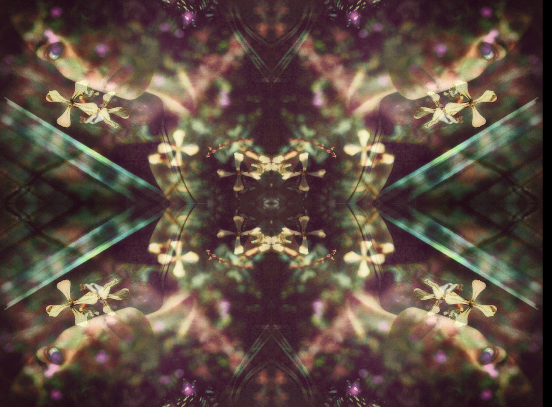 kaleidoscope image of woman and arugula flowers