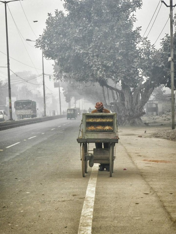 man pushing cart along roadside in fog