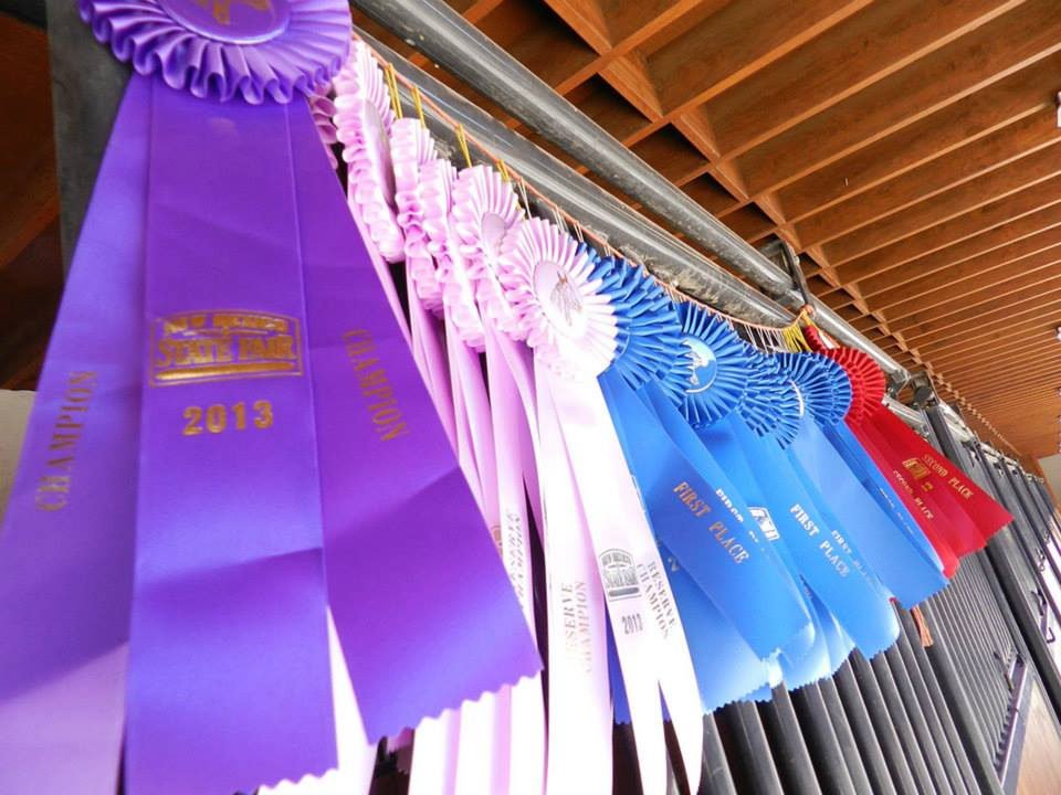prize ribbons at state fair