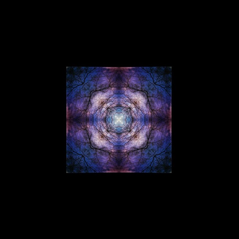 blue and purple branches yantra