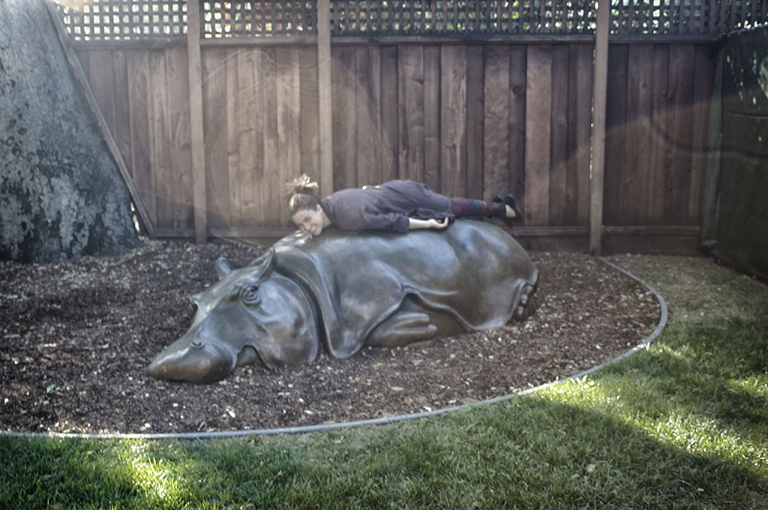planking on hippo