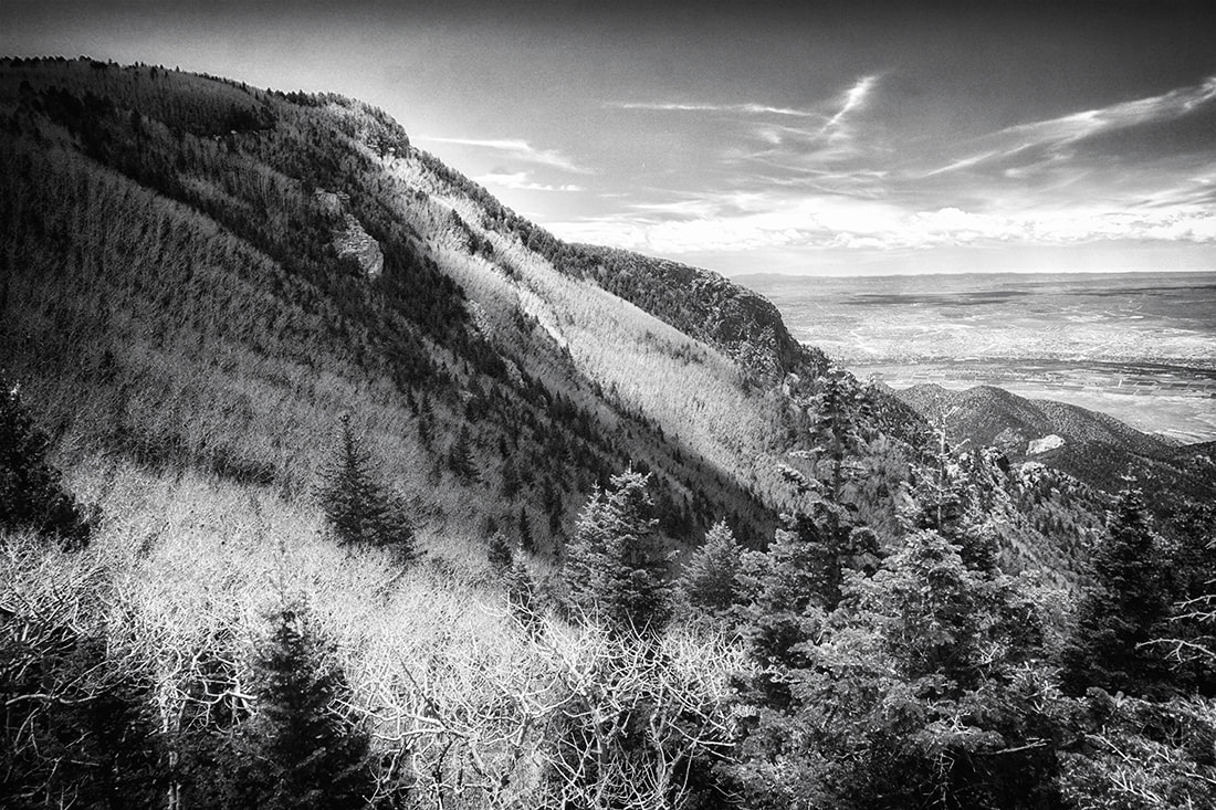 view of sandia mountains from North Crest trail black and white