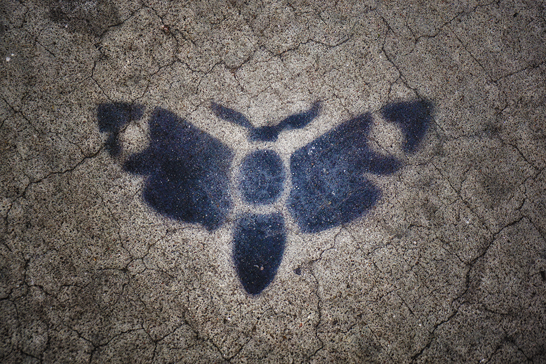 moth spray painted on sidewalk