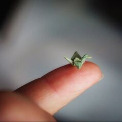 tiny origami paper crane sits on my finger