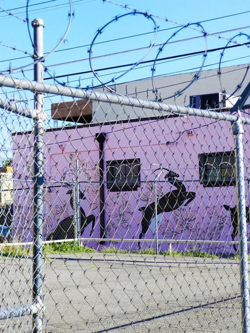 deer painted on pink wall, behind barbed wire fence
