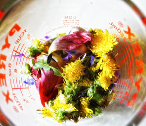 flowers in measuring cup