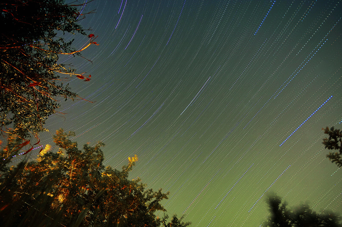 star trails from pond