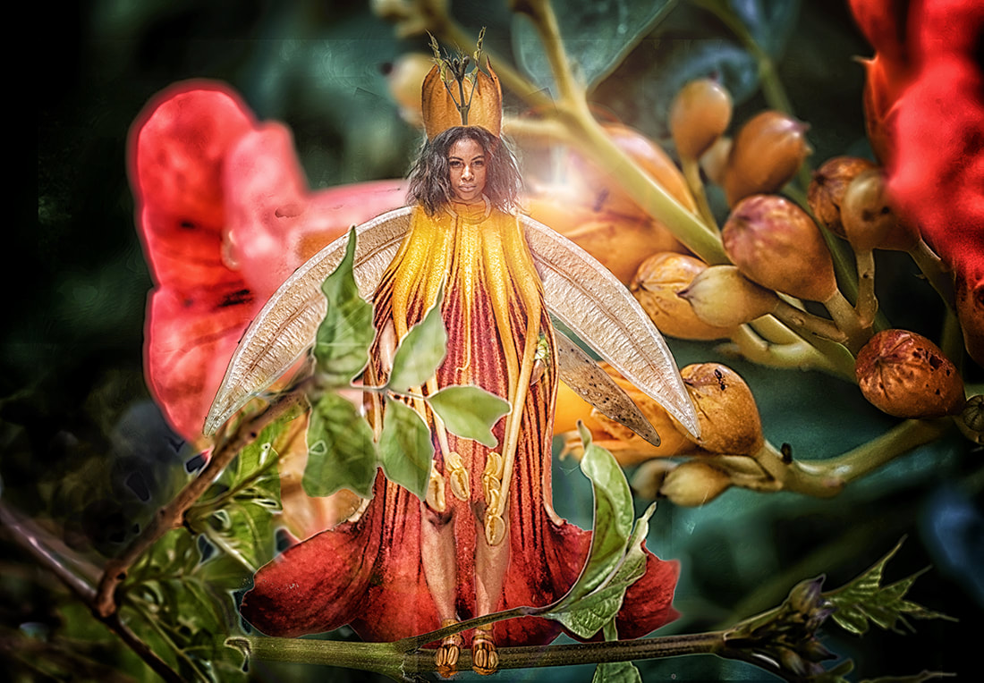 trumpet vine fairy photo collage